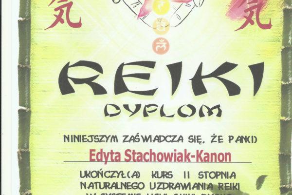 REKI 3